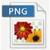 PNG fileformat ikon