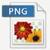 PNG fileformat ikon